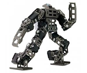 Robotis Series - Bioloid GP Fighting Robot