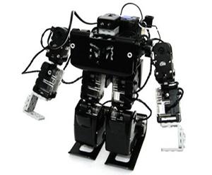 RQ Robot