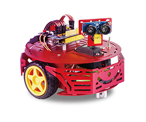 ZinnoBot ALSRobot Version