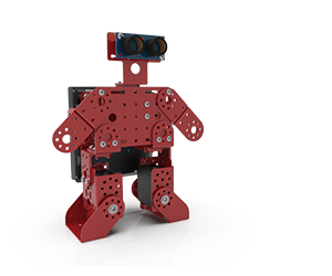 Reception Robot